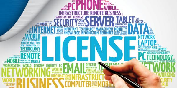 Software Licensing
